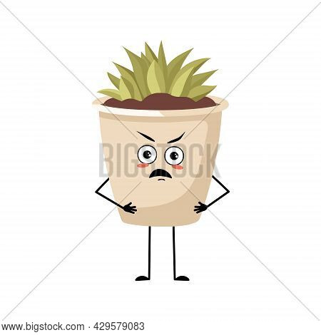 Cute Character Indoor Plant In A Pot With Angry Emotions, Grumpy Face, Furious Eyes, Arms And Legs.