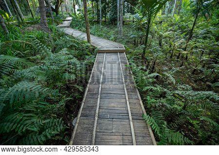 Wooden Bridge Walkway Bamboo Bridge Spanning To The Garden In Thailand