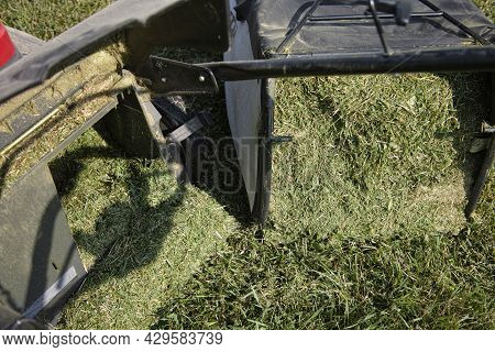 Closeup Of A Lawn Mower Bunker Full Of Chopped Silage, Outdoor Shot