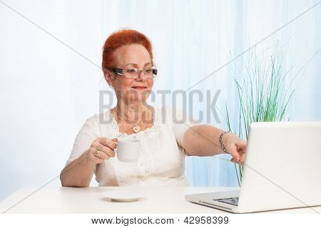 Senior Lady Pointing To Laptop Screen