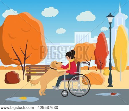 Girl In Wheelchair Plays Witn Her Dog. Companion Dog Supports Disabled Child. Zootherapy And Kindnes