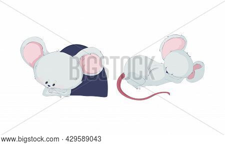 Cute Funny Mouse Characters Set. Lovely Little Mice Sitting In Hole And Sleeping Cartoon Vector Illu