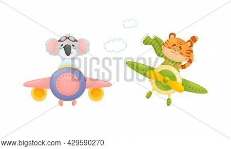 Cute Baby Animals Pilots Set. Funny Koala, Tiger Pilot Characters Flying By Airplane, Front View Car
