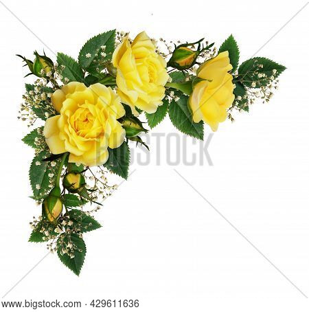 Yellow Rose Flowers In A Corner Arrangement Isolated On White Background. Flat Lay, Top View.