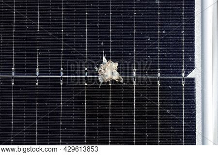 Bird Poop On The Surface Of Solar Pv Panel. This May Cause The Hot Spot That Can Damage The Wafer In