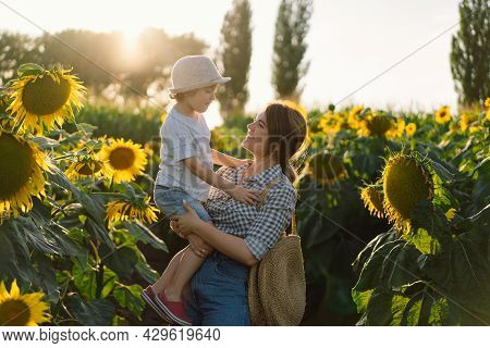 Mother With Little Baby Son In Sunflowers Field During Golden Hour. Mom And Son Are Active In Nature