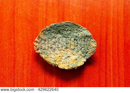 Mold On Bread . Spoiled Food . Inedible Nourishment , Red Background