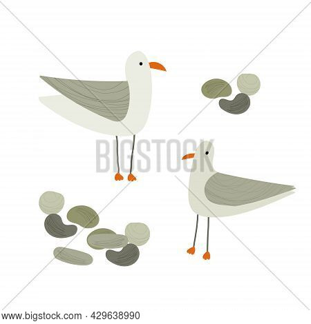 Hand Drawn Vector Illustration Of Cartoon Style Seagulls. Isolated On White Background.