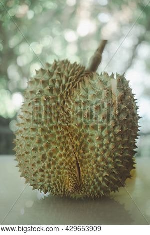Fresh Durians, Often Called The King Of Fruits Peels .it Is A Big Fruit With A Strong Smell A Hard S