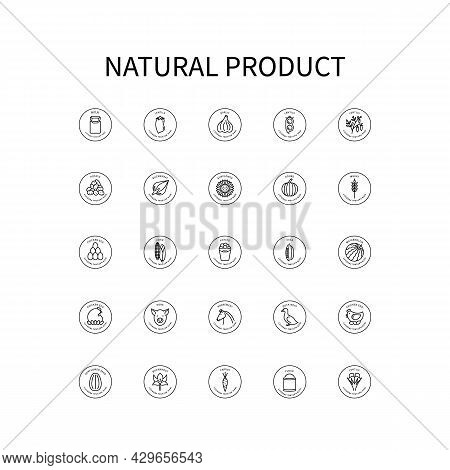 Simple Set Of Vector Icons On Theme Natural Products. Milk, Garlic, Meat, Lentils, Sunflower, Pumpki