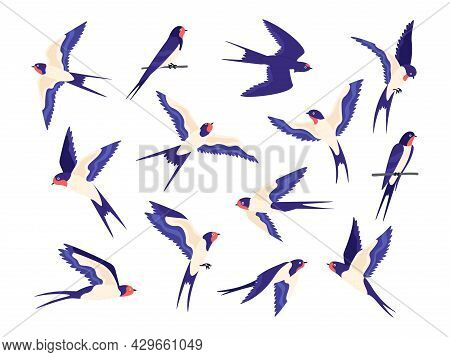 Cartoon Small Barn Swallow Birds Flight Poses. Flat Swallows Fly In Sky And Sit On Wire. Swift Black