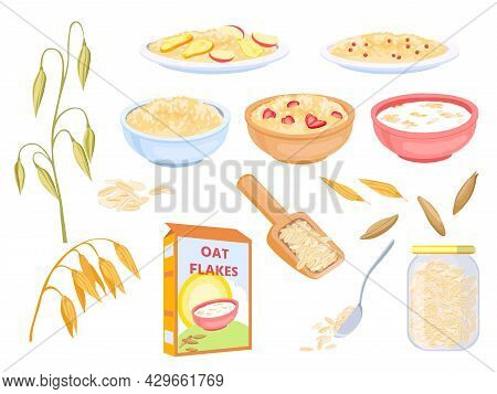 Cartoon Oatmeal Breakfast Cereals, Sweet Flakes And Grains. Oat Plant And Seed. Porridge With Fruit