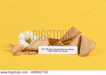 Note In Fortune Cookie Saying 'your Life Does Not Get Better By Chance, It Gets Better By Change' On