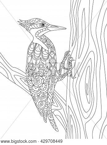 Woodpecker On A Tree Trunk Trying To Make A Hole Colorless Line Drawing. Pecker Bird Stays On Branch