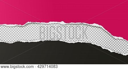 Torn, Ripped Dark Pink And Black Paper Strips With Soft Shadow Are On Squared Background For Text. V