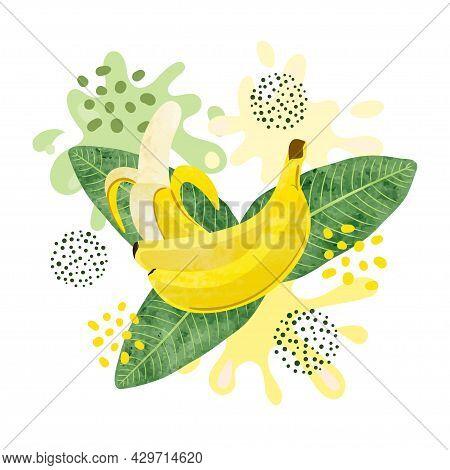 Banana Fruit Vector Illustration. Abstract Watercolor Bananas Juicy Splash