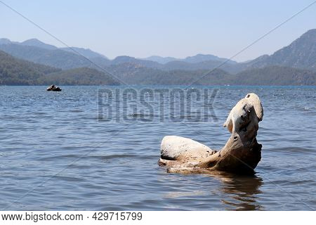 View From Water With Driftwood To The Calm Sea And Mountains In Mist. Landscape Of Aegean Sea, Backg