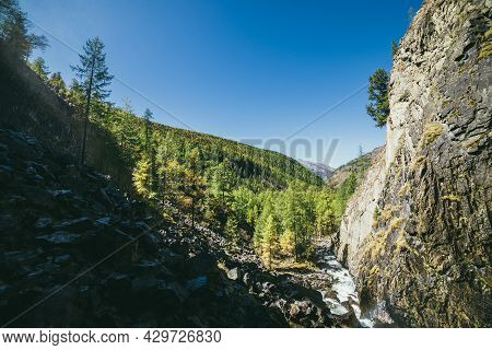 Scenic Sunny Alpine Landscape With Mountain River In Narrow Valley And Green Mountains With Conifero