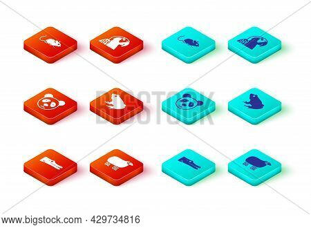 Set Crocodile, Sheep, Cute Panda Face, Frog, Macaw Parrot And Rat Icon. Vector