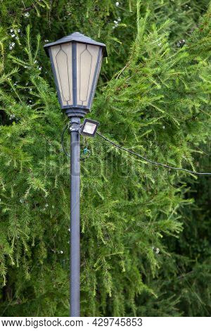 Vintage Street Lamp Against The Background Of Green Fir Tree With Led Spotlight, The Concept Of Repl