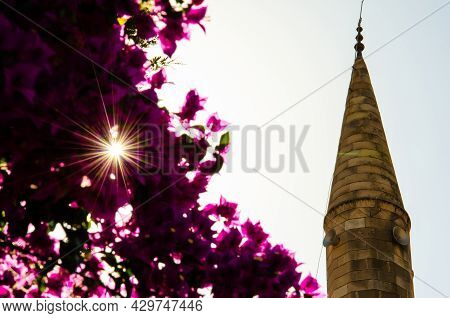 Selective Focus On Minaret, Purple Bougainvillea Shrub With Sun Rays. Arabian Architecture In Harmon