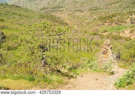 Spring Landscape With Hiking Path  Through Virginal Forest In Karadag Nature Reserve, Crimean Penins