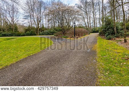Rural Road With A Bifurcation And A Pole Lamp Among Green Grass With Bare Trees In The Background, C