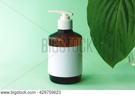 Pump Plastic Bottle For Intimate Gel Dispenser Or Liquid Soap On Blue Background With Green Eucalypt