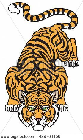 Tiger Ready To Jump. Big Cat Eyes Looking Straight. Isolated Front View Image. Tattoo Style Vector I