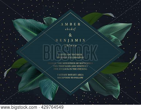 Tropical Elegant Frame Arranged From Exotic Emerald Leaves