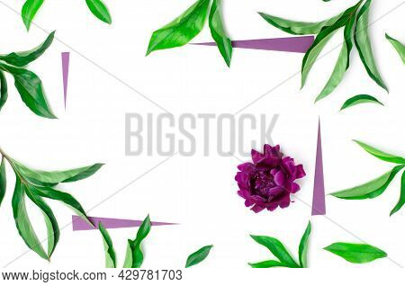 Mock Up For Greeting Card Or Invitation. A Blank Sheet Of Paper In A Frame Of Green Leaves And A Peo