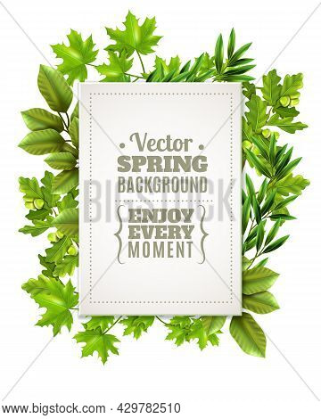 Decorative Green Frame With Spring Leaves And Branches Of Deciduous Trees And White Rectangle With T