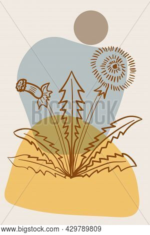 Dandelion, Abstract, Poster, Dd Ww Herb Isol