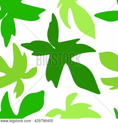 Philodendron Florida Pedatum Ghost Beauty Squamiferum Leaf Aroid Pattern Seamless Vector Template On