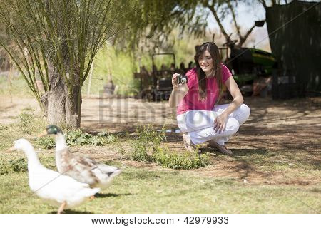 Cute girl taking some pictures of ducks in a  farm poster