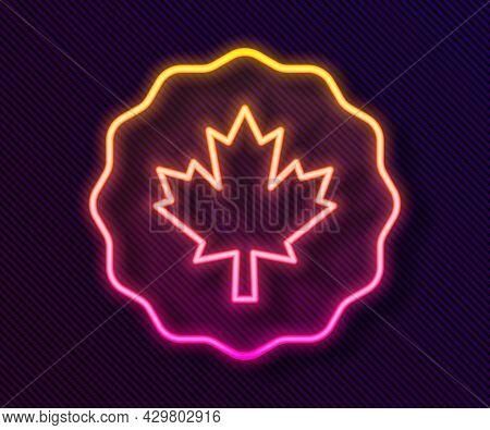 Glowing Neon Line Canadian Maple Leaf Icon Isolated On Black Background. Canada Symbol Maple Leaf. V