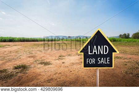 Land For Sale Sign Against Trimmed Lawn Background. Empty Dry Cracked Swamp Reclamation Soil, Land P