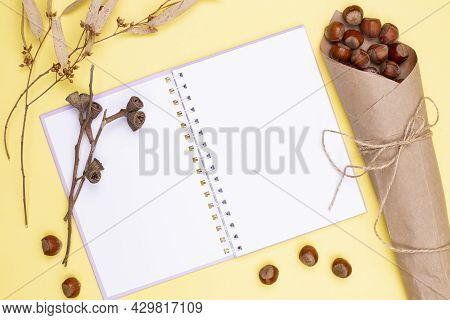 Autumn Composition. Blank Notebook With A Spring And Nuts Wrapped In Kraft Paper And Twine, Dry Leav