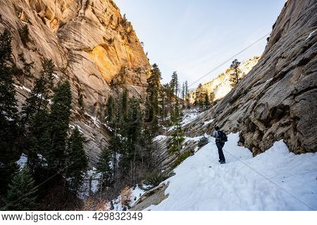 Hiker Climbing Snow Covered Trail Up The West Rim In Zion National Park