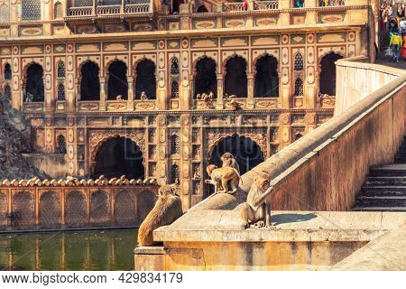 Monkey Temple Main Facade View, Jaipur, India.