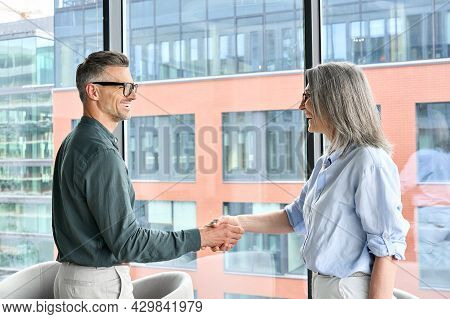 Two Happy Professional Businessman And Businesswoman Executive Leaders Shaking Hands At Office Meeti