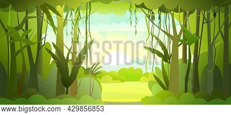 Jungle Illustration. Dense Wild-growing Tropical Plants With Tall, Branched Trunks. Rainforest Lands