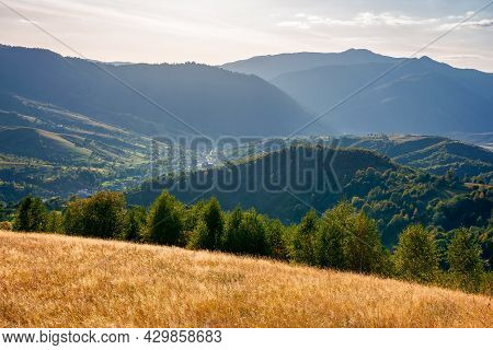 Autumnal Landscape Of Carpathian Countryside. Early Autumn Season In Mountains. Trees On The Grassy