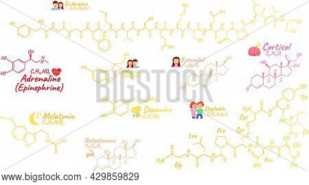 Human Big Set Hormone Concept Chemical Skeletal Formula Icon Label, Text Font Vector Illustration, I