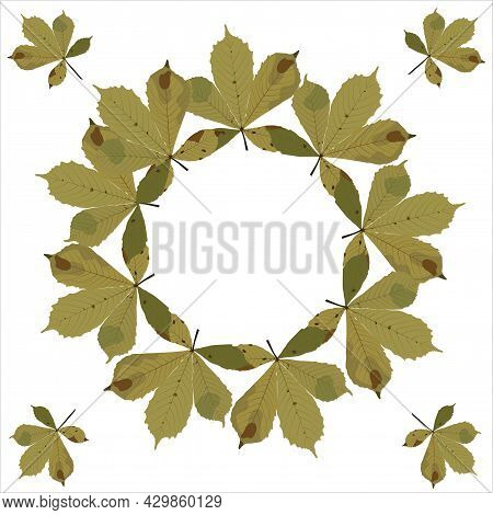 A Wreath Of Fallen Chestnut Leaves. Autumn. Vector Stock Illustration Isolated On White Background.