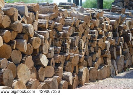 A Row Of Stacked Logs For Kindling The Stove On The Ground