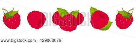 Raspberry, Isolated On White Bacground. Raspberry Vector Set, Whole And Slice Of Raspberry With Gree