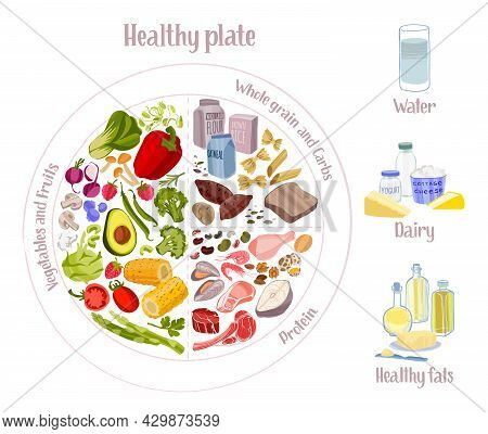 Rational Diet Infographics. Healthy Eating Plate Concept.