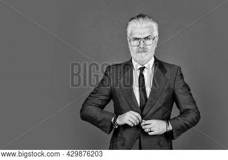 Handsome Businessman. Businessman Formal Suit. Smart Management Concept. Boss Owner And Founder. Hea