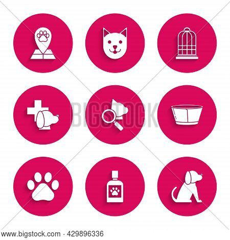 Set Veterinary Clinic Symbol, Dog Medicine Bottle, Protective Cone Collar, Paw Print, Cage For Birds